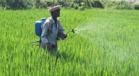 BEWARE : Crop pesticides can cause health hazards