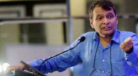 Govt working on strategy to diversify export basket: Prabhu