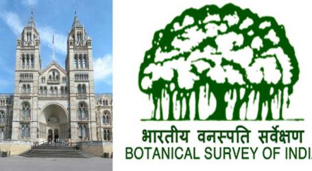 MoU signed between Botanical Survey of India and UK's Natural History Museum