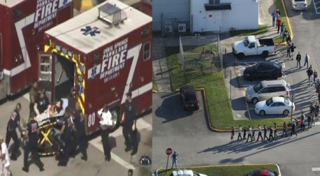 Mass shooting leaves 17 dead in Florida school