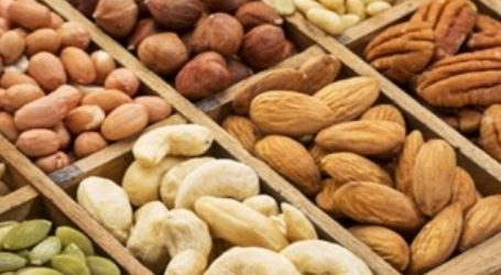 Nut protein good for cardio health: Study