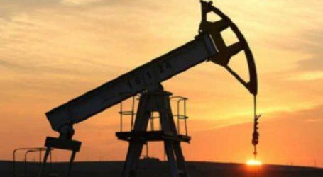 UAE oil firm sends 2mn barrel crude oil to India