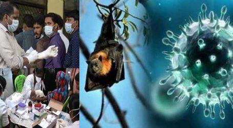 Nipah Virus : Gujarat to screen tourists returning from Kerala
