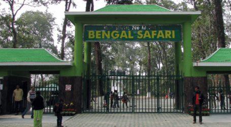 Mamata names tiger cubs at Bengal Safari Park
